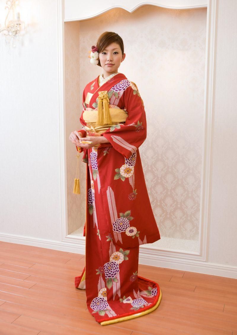 赤 万寿菊の写真001