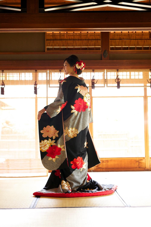 サヤ古都桜黒絞り牡丹の写真002