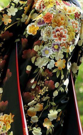 金彩桜菊に毬絵模様の柄