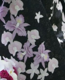 桜金彩黒胡蝶蘭の柄